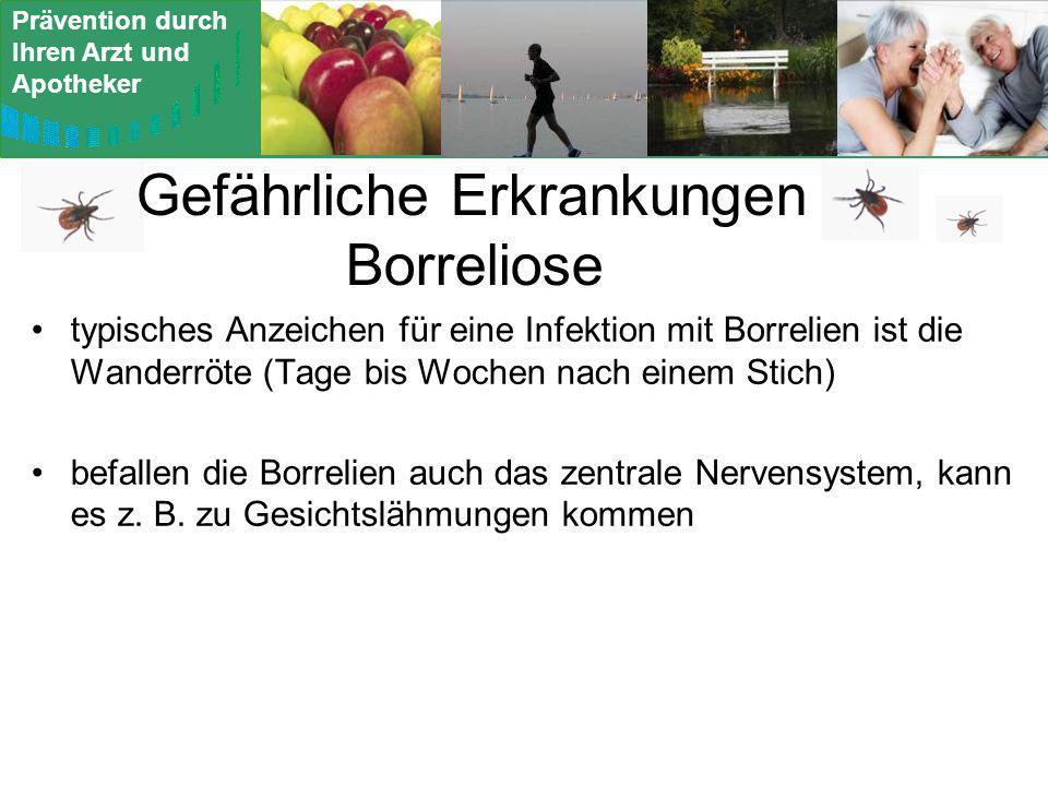 Prävention durch Ihren Arzt und Apotheker Gefährliche Erkrankungen Borreliose typisches Anzeichen für eine Infektion mit Borrelien ist die Wanderröte