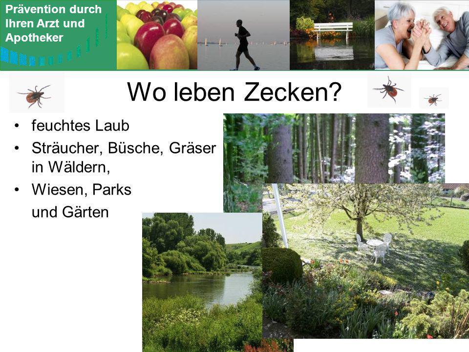 Prävention durch Ihren Arzt und Apotheker Wo leben Zecken? feuchtes Laub Sträucher, Büsche, Gräser in Wäldern, Wiesen, Parks und Gärten