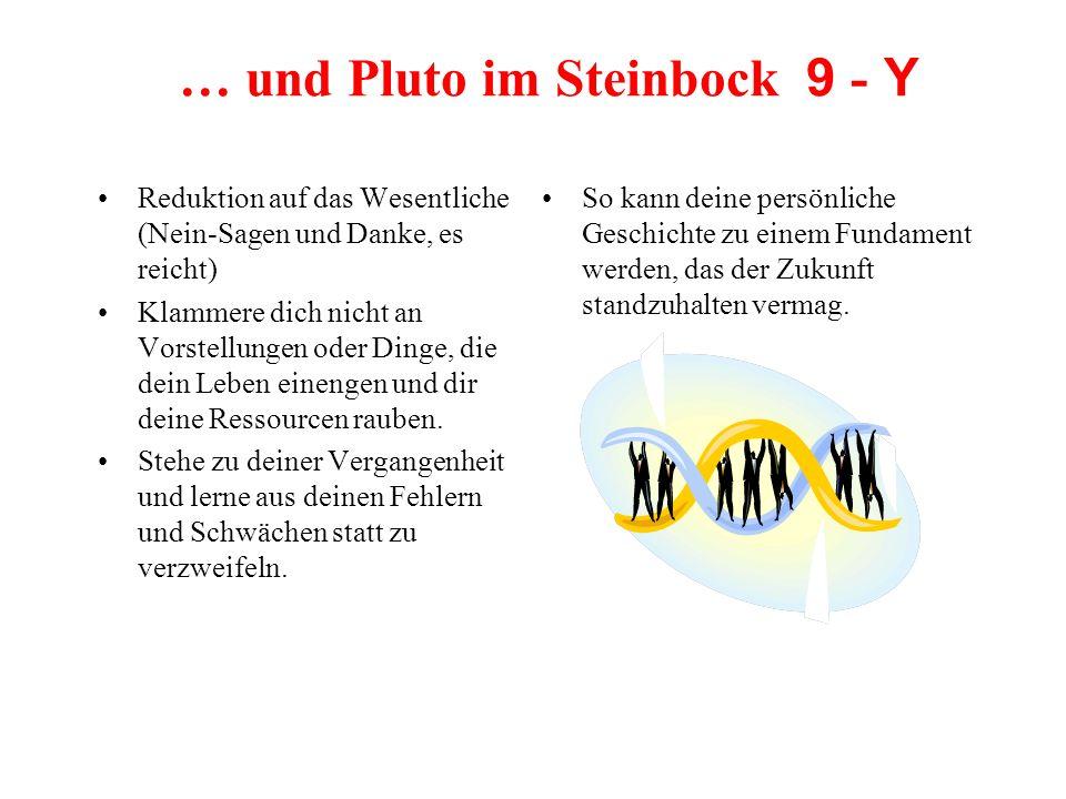 … und Pluto im Steinbock 9 - Y Reduktion auf das Wesentliche (Nein-Sagen und Danke, es reicht) Klammere dich nicht an Vorstellungen oder Dinge, die de
