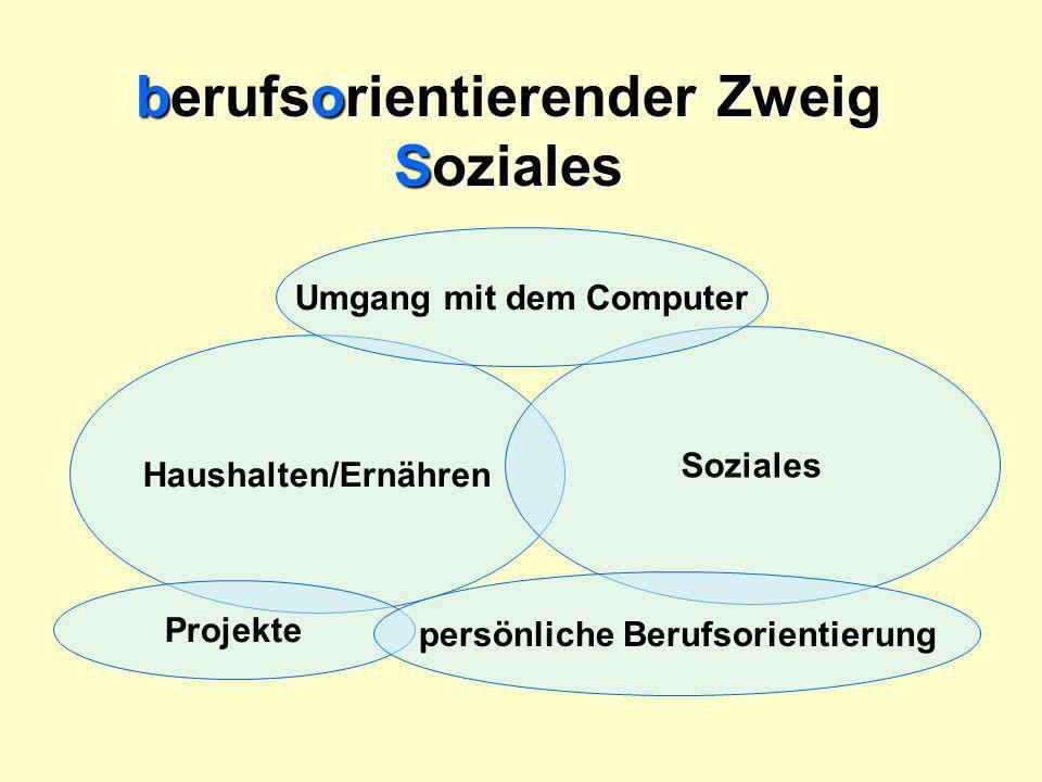 Haushalten/Ernähren Soziales Umgang mit dem Computer Projekte berufsorientierender Zweig Soziales persönliche Berufsorientierung