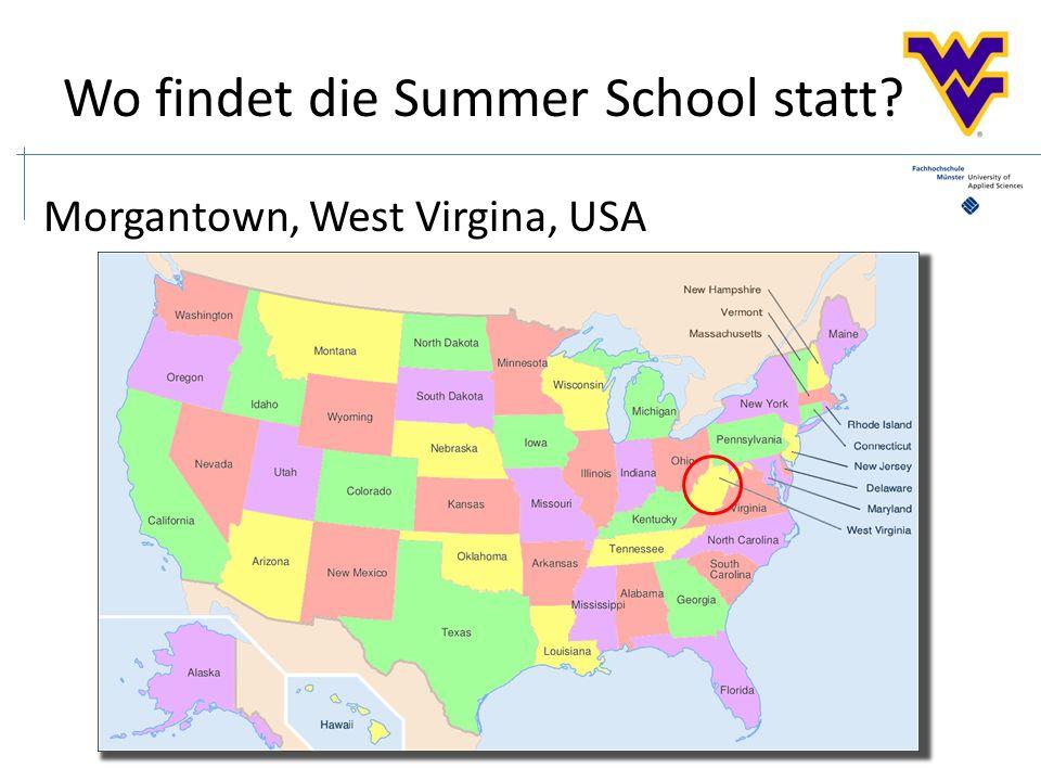 Nach der Summer School...