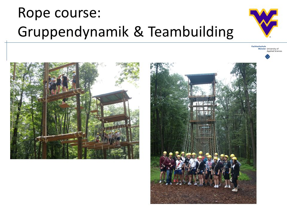 Rope course: Gruppendynamik & Teambuilding