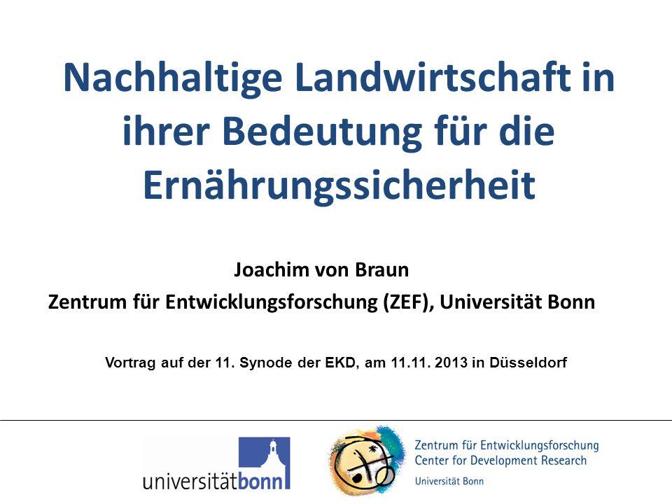 Nachhaltige Landwirtschaft in ihrer Bedeutung für die Ernährungssicherheit Joachim von Braun Zentrum für Entwicklungsforschung (ZEF), Universität Bonn