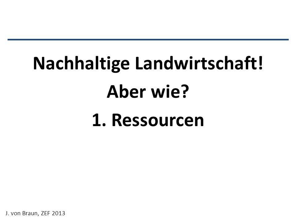 Nachhaltige Landwirtschaft! Aber wie? 1. Ressourcen J. von Braun, ZEF 2013