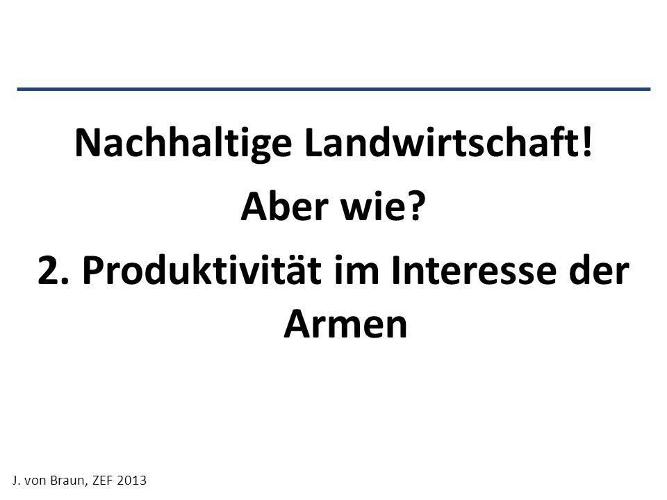 Nachhaltige Landwirtschaft! Aber wie? 2. Produktivität im Interesse der Armen J. von Braun, ZEF 2013