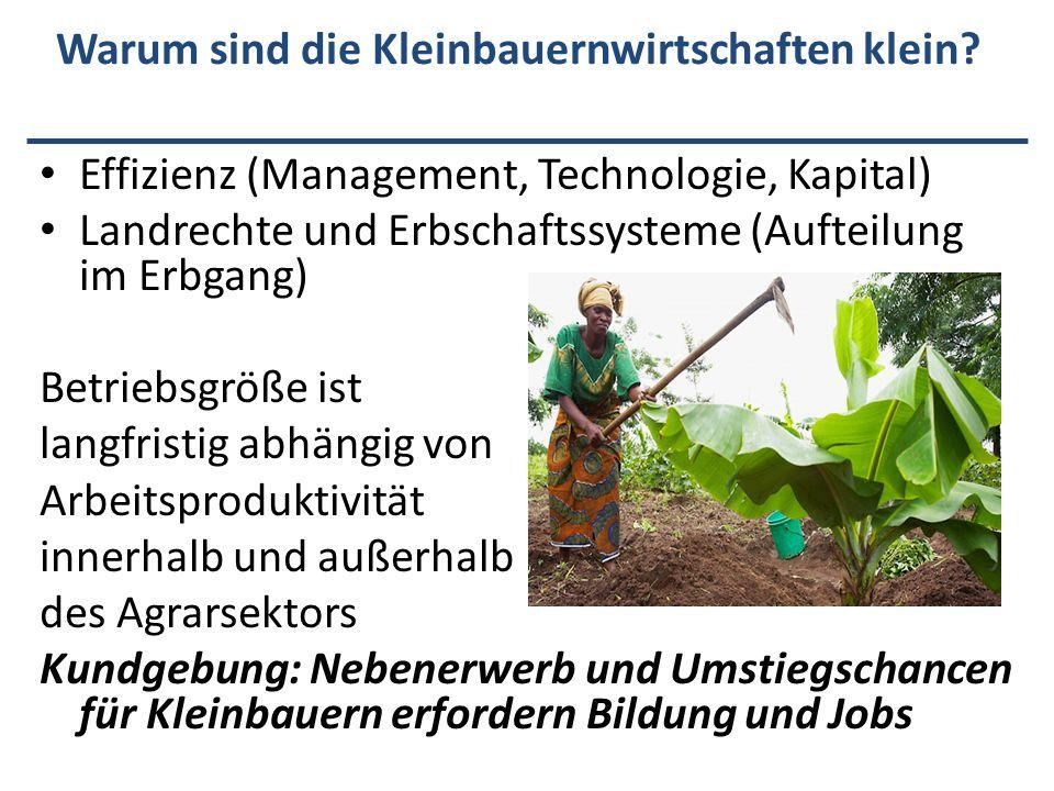 Warum sind die Kleinbauernwirtschaften klein? Effizienz (Management, Technologie, Kapital) Landrechte und Erbschaftssysteme (Aufteilung im Erbgang) Be