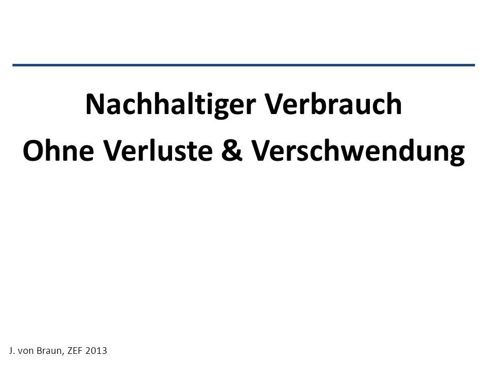 Nachhaltiger Verbrauch Ohne Verluste & Verschwendung J. von Braun, ZEF 2013