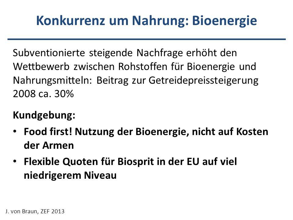 Konkurrenz um Nahrung: Bioenergie Subventionierte steigende Nachfrage erhöht den Wettbewerb zwischen Rohstoffen für Bioenergie und Nahrungsmitteln: Be