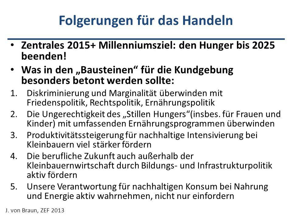 Folgerungen für das Handeln Zentrales 2015+ Millenniumsziel: den Hunger bis 2025 beenden! Was in den Bausteinen für die Kundgebung besonders betont we