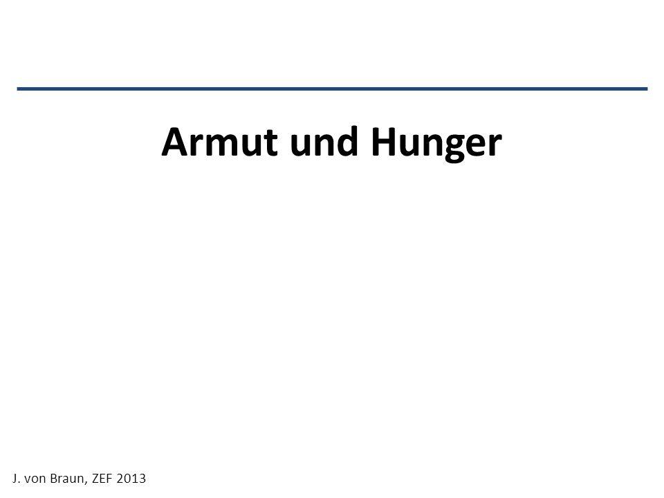 Armut und Hunger J. von Braun, ZEF 2013
