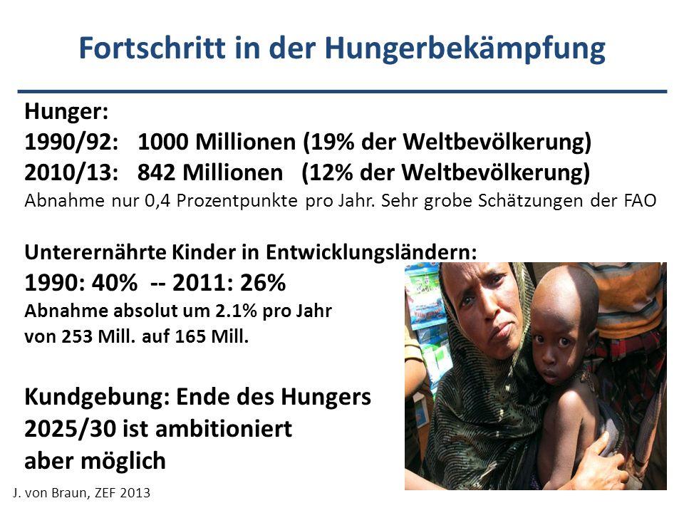 Fortschritt in der Hungerbekämpfung Hunger: 1990/92: 1000 Millionen (19% der Weltbevölkerung) 2010/13: 842 Millionen (12% der Weltbevölkerung) Abnahme