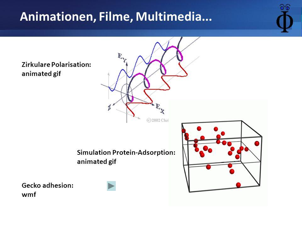 Animationen, Filme, Multimedia... Gecko adhesion: wmf Zirkulare Polarisation: animated gif Simulation Protein-Adsorption: animated gif