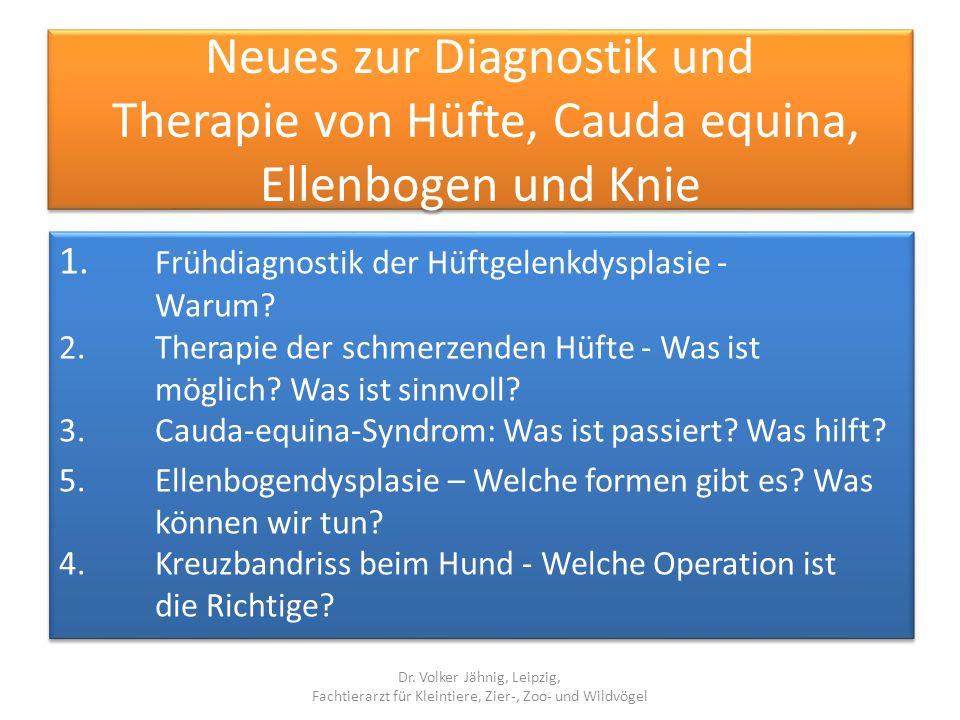 Neues zur Diagnostik und Therapie von Hüfte, Cauda equina, Ellenbogen und Knie 1. Frühdiagnostik der Hüftgelenkdysplasie - Warum? 2. Therapie der schm