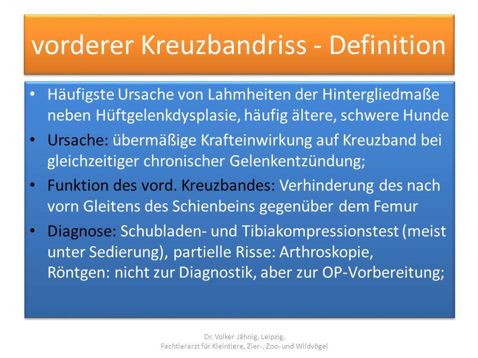 vorderer Kreuzbandriss - Definition Häufigste Ursache von Lahmheiten der Hintergliedmaße neben Hüftgelenkdysplasie, häufig ältere, schwere Hunde Ursac