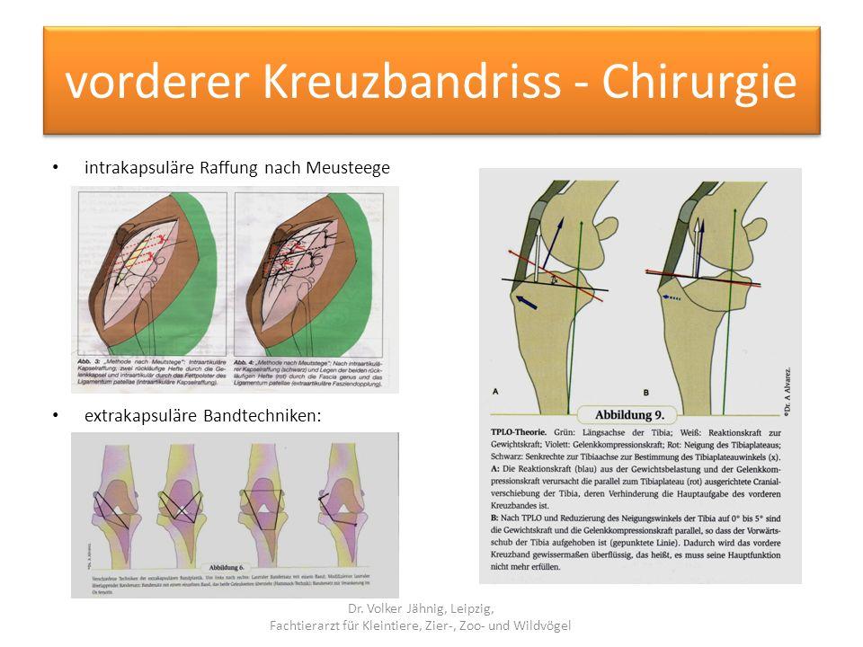 vorderer Kreuzbandriss - Chirurgie intrakapsuläre Raffung nach Meusteege extrakapsuläre Bandtechniken: Dr. Volker Jähnig, Leipzig, Fachtierarzt für Kl