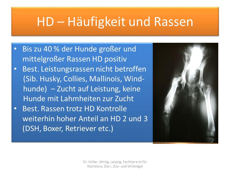 HD – Häufigkeit und Rassen Bis zu 40 % der Hunde großer und mittelgroßer Rassen HD positiv Best. Leistungsrassen nicht betroffen (Sib. Husky, Collies,