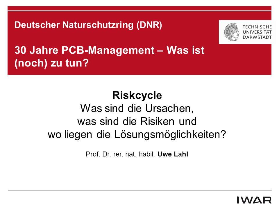 1.Problem 2. Risiken 3. Lösungsmöglichkeiten Agenda DNR Berlin 2013 | Riskcycle | Prof.