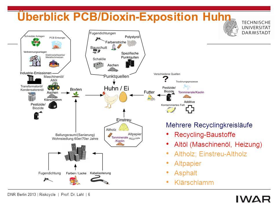Recycling von PBDE-haltigen PUR- Schäumen für Teppichrücken in den USA DNR Berlin 2013 | Riskcycle | Prof.