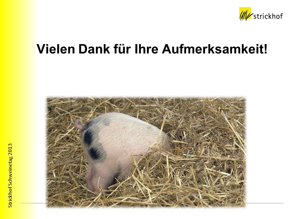 Strickhof Schweinetag 2013 Vielen Dank für Ihre Aufmerksamkeit!