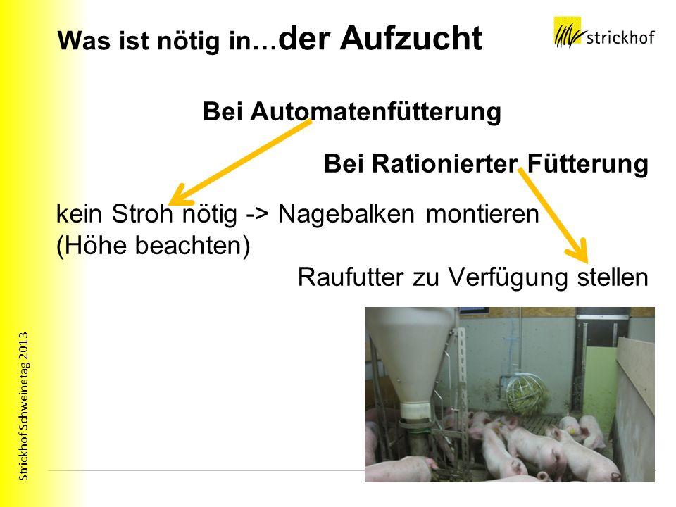 Strickhof Schweinetag 2013 Was ist nötig in… der Aufzucht Bei Automatenfütterung Bei Rationierter Fütterung kein Stroh nötig -> Nagebalken montieren (