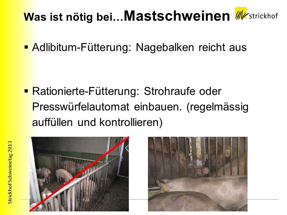 Strickhof Schweinetag 2013 Was ist nötig bei… Mastschweinen Adlibitum-Fütterung: Nagebalken reicht aus Rationierte-Fütterung: Strohraufe oder Presswür
