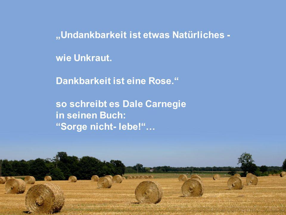 Undankbarkeit ist etwas Natürliches - wie Unkraut. Dankbarkeit ist eine Rose. so schreibt es Dale Carnegie in seinen Buch: Sorge nicht- lebe!…
