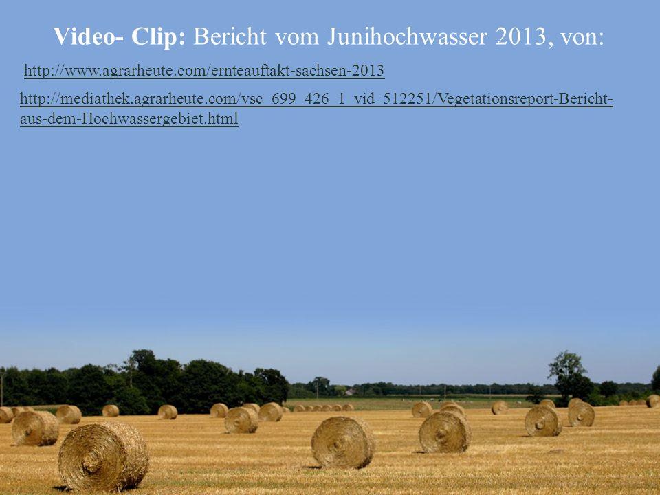 Video- Clip: Bericht vom Junihochwasser 2013, von: http://www.agrarheute.com/ernteauftakt-sachsen-2013 http://mediathek.agrarheute.com/vsc_699_426_1_v