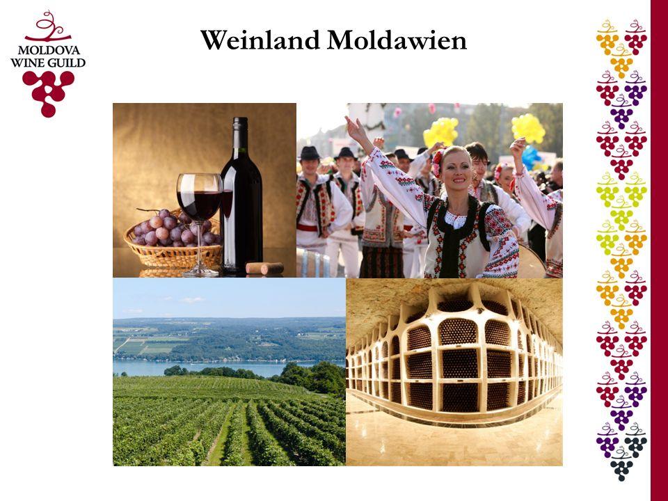 Weinindustrie in Zahlen Ökonomische und soziale Bedeutung Wein als bedeutende Einnahmequelle: Landwirtschaft: 2/5 der gesamten Agrarleistung Außenhandel: 1/3 der Gesamtexporte Wertschöpfung: 1/10 des Bruttoinlandsproduktes Zahl der BetriebeKapazität Trauben verarbeitende Betriebe1201,0 Mio.