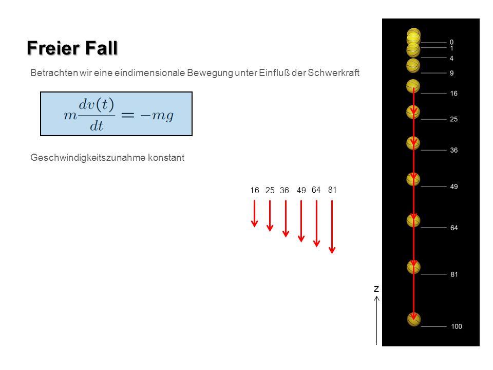 Betrachten wir eine eindimensionale Bewegung unter Einfluß der Schwerkraft Freier Fall Geschwindigkeitszunahme konstant z 16 253649 6481