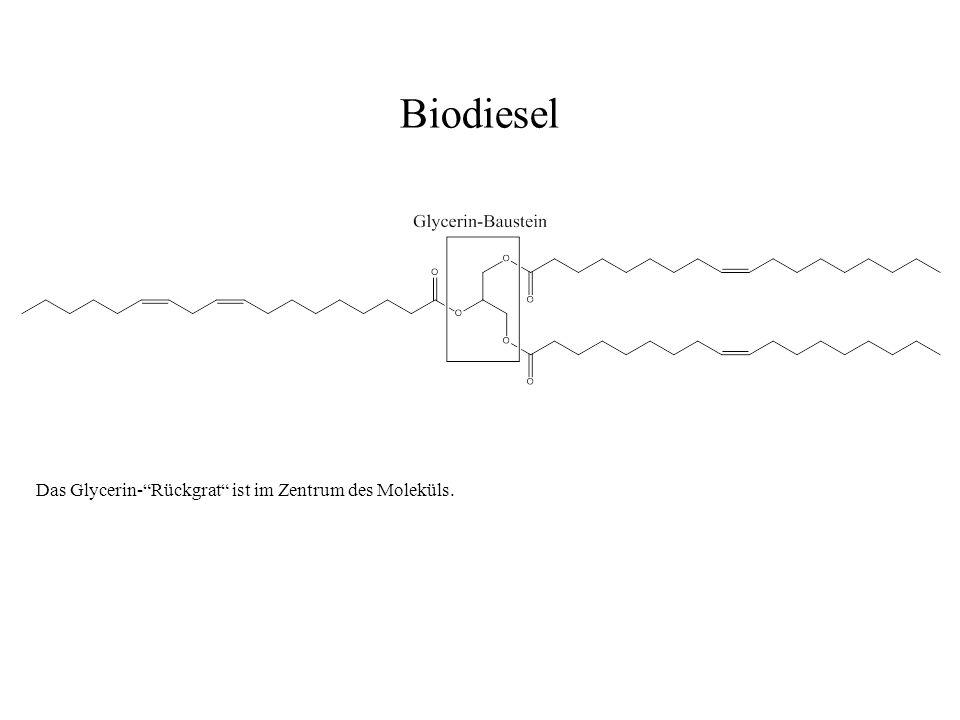 Das Glycerin-Rückgrat ist im Zentrum des Moleküls. Biodiesel