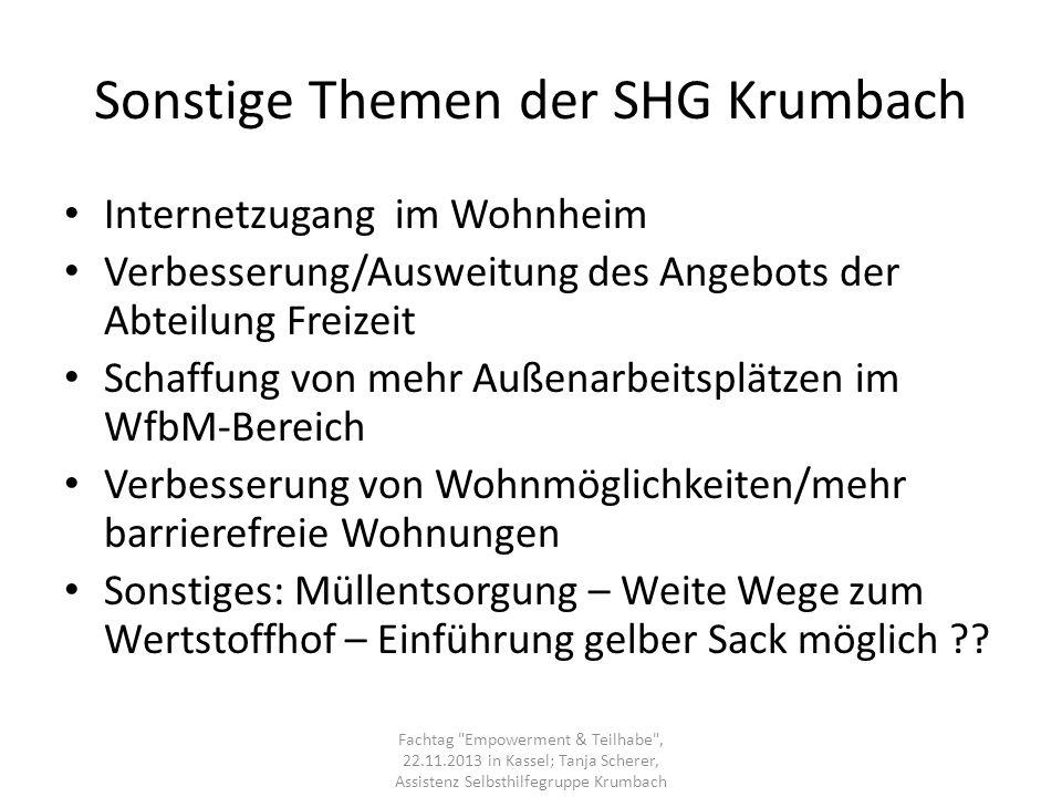 Sonstige Themen der SHG Krumbach Internetzugang im Wohnheim Verbesserung/Ausweitung des Angebots der Abteilung Freizeit Schaffung von mehr Außenarbeit