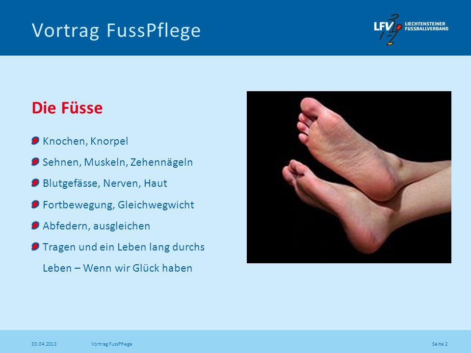 Seite 13 30.04.2013 Vortrag FussPflege