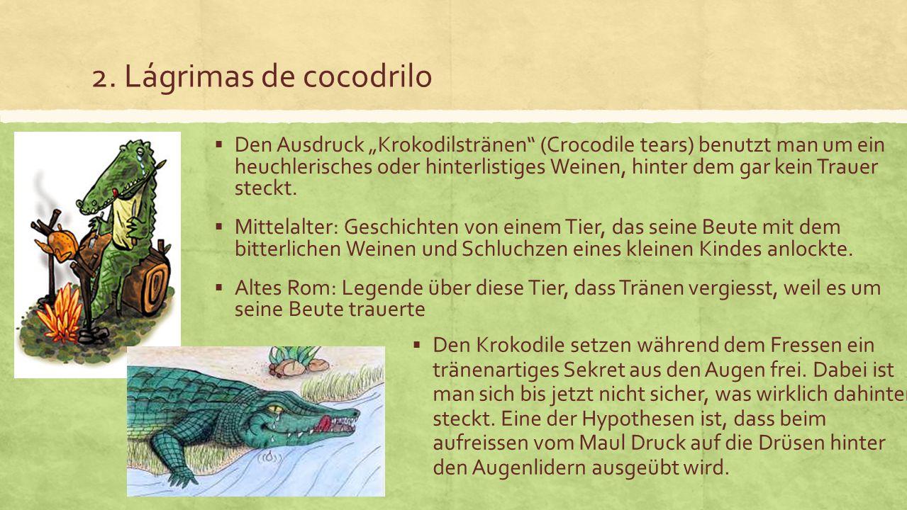 2. Lágrimas de cocodrilo Den Ausdruck Krokodilstränen (Crocodile tears) benutzt man um ein heuchlerisches oder hinterlistiges Weinen, hinter dem gar k