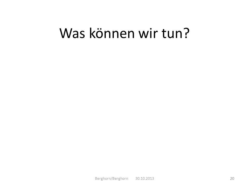 Berghorn/Berghorn 30.10.201320 Was können wir tun? 20