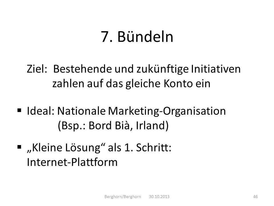 Ziel: Bestehende und zukünftige Initiativen zahlen auf das gleiche Konto ein Ideal: Nationale Marketing-Organisation (Bsp.: Bord Bià, Irland) Kleine L