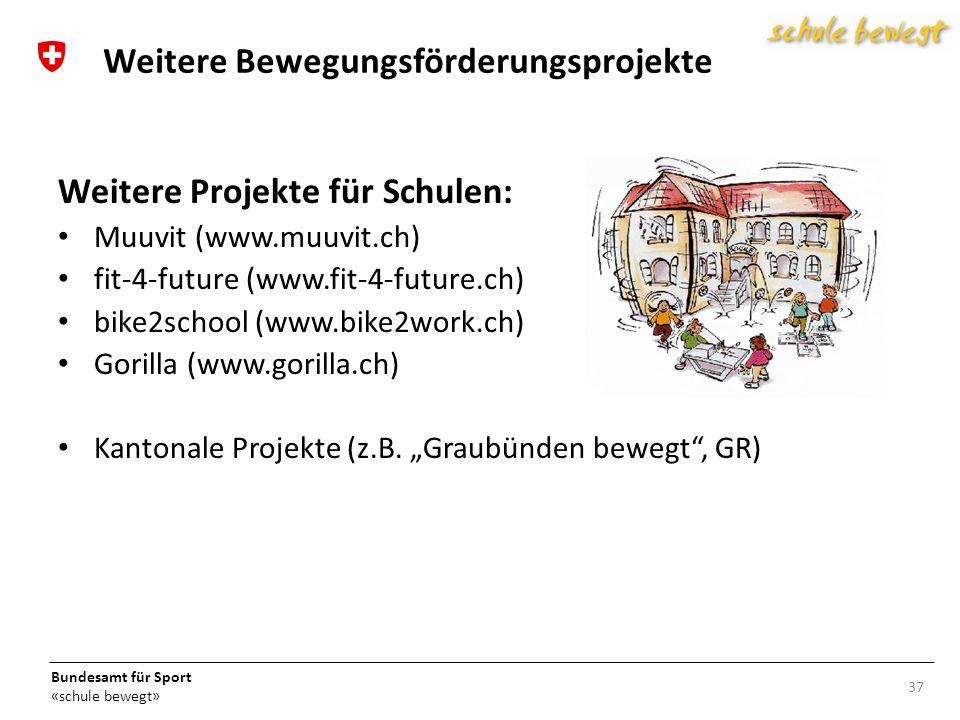 Bundesamt für Sport «schule bewegt» 37 Weitere Bewegungsförderungsprojekte Weitere Projekte für Schulen: Muuvit (www.muuvit.ch) fit-4-future (www.fit-4-future.ch) bike2school (www.bike2work.ch) Gorilla (www.gorilla.ch) Kantonale Projekte (z.B.