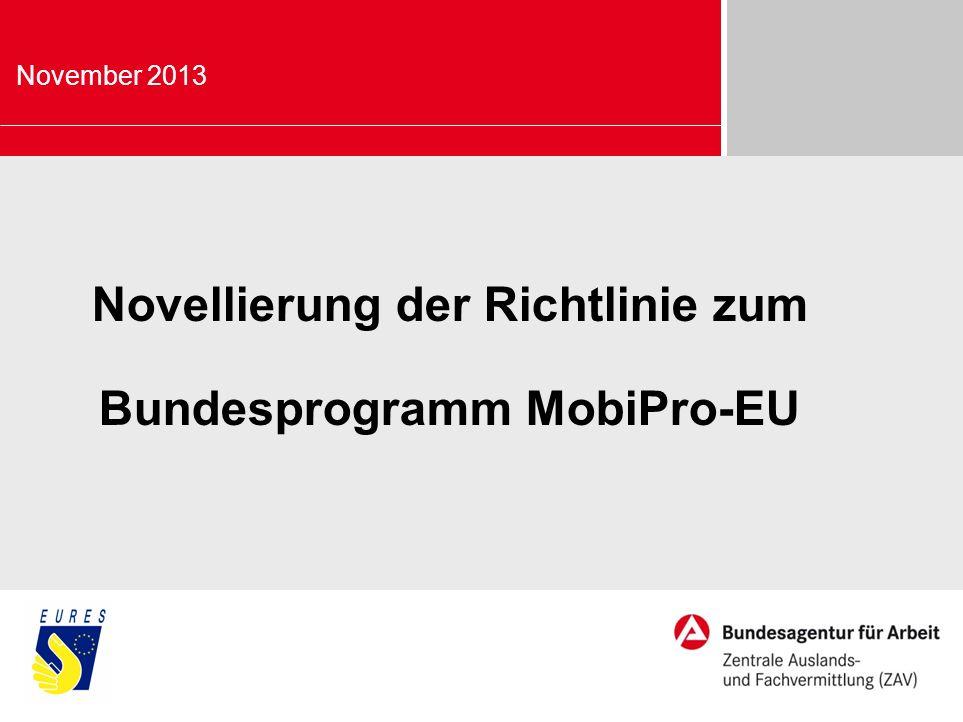 Novellierung der Richtlinie zum Bundesprogramm MobiPro-EU November 2013