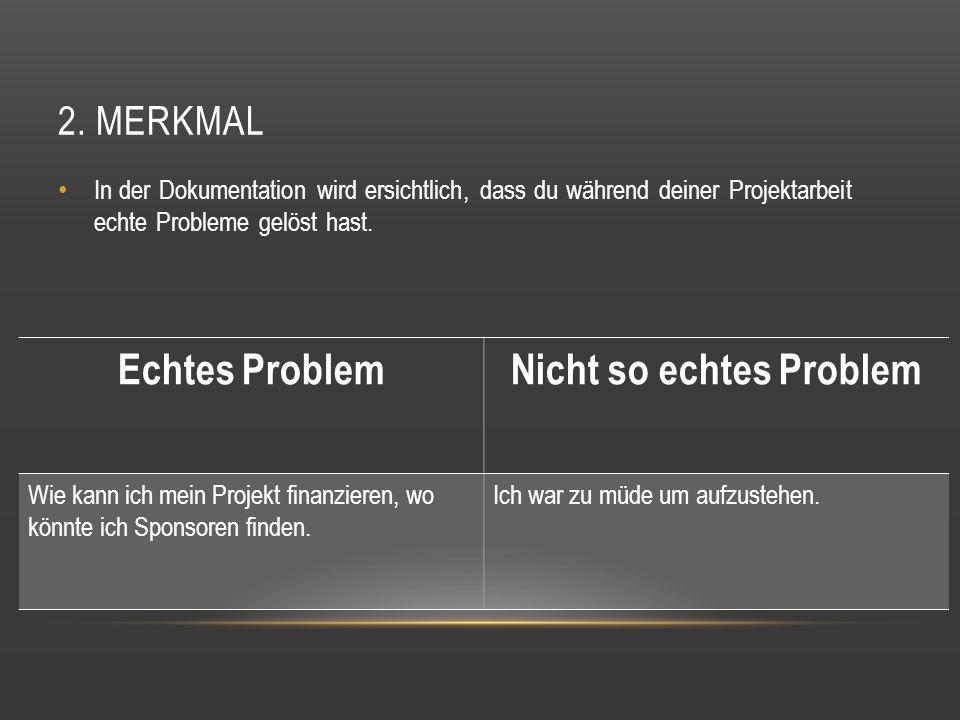 2. MERKMAL In der Dokumentation wird ersichtlich, dass du während deiner Projektarbeit echte Probleme gelöst hast. Echtes ProblemNicht so echtes Probl