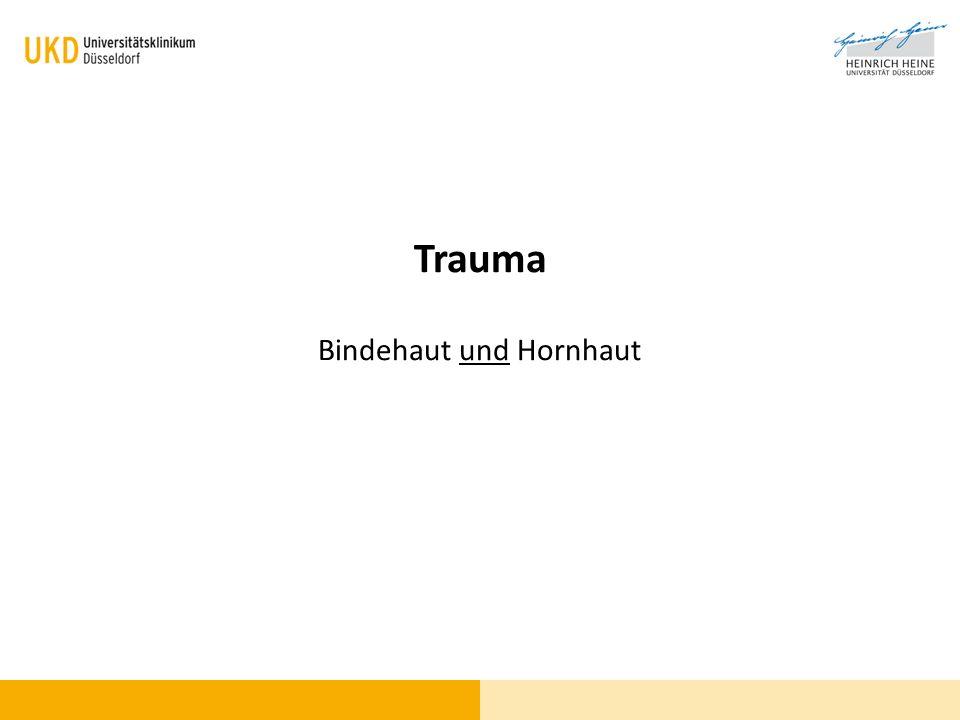 Trauma Bindehaut und Hornhaut