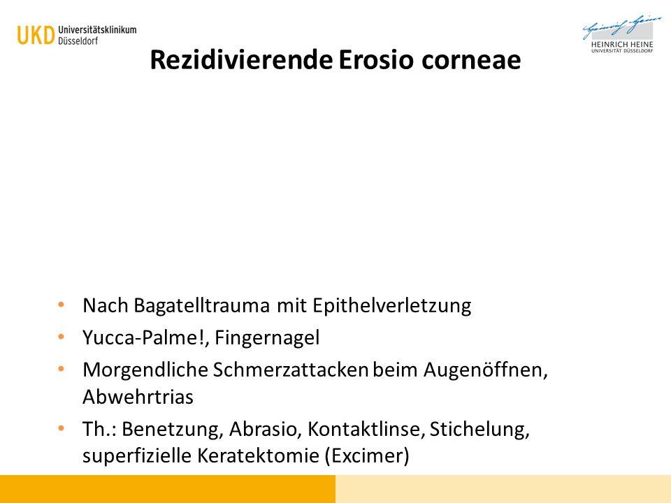Rezidivierende Erosio corneae Nach Bagatelltrauma mit Epithelverletzung Yucca-Palme!, Fingernagel Morgendliche Schmerzattacken beim Augenöffnen, Abweh