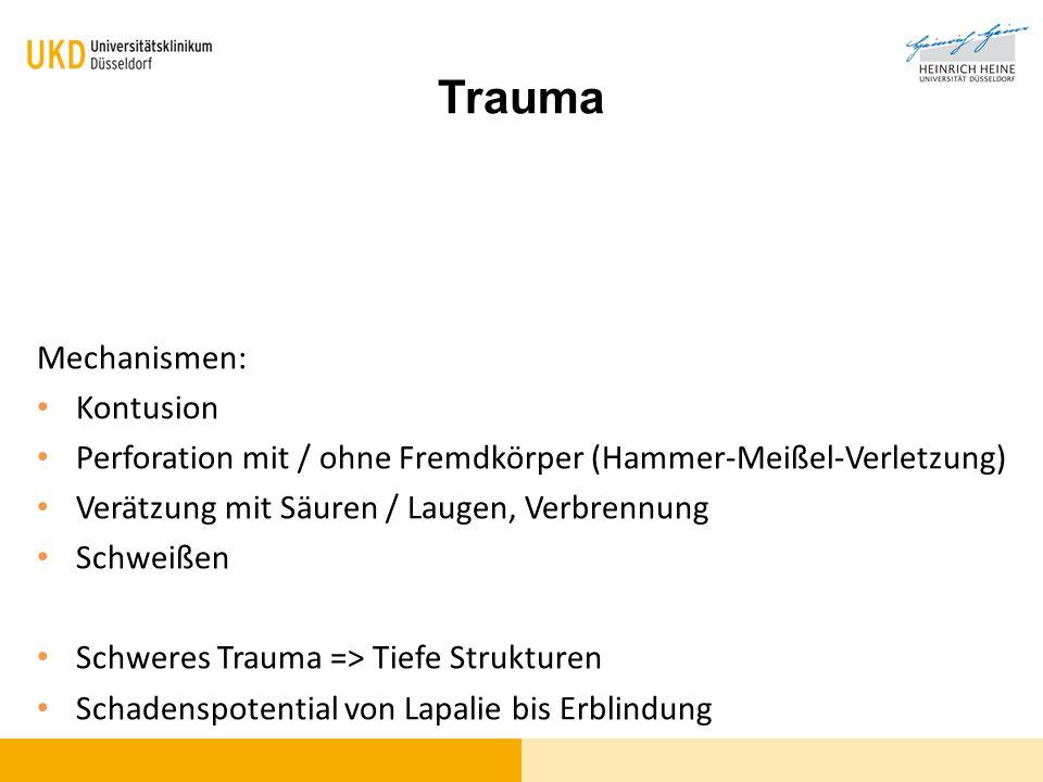 Trauma Mechanismen: Kontusion Perforation mit / ohne Fremdkörper (Hammer-Meißel-Verletzung) Verätzung mit Säuren / Laugen, Verbrennung Schweißen Schwe