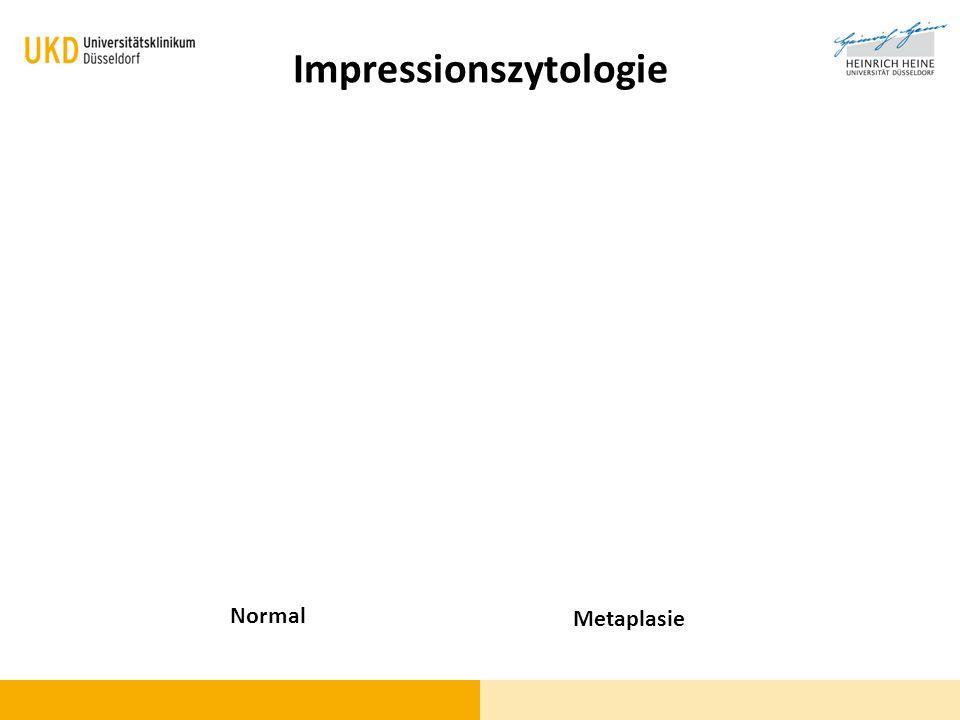 Impressionszytologie Normal Metaplasie