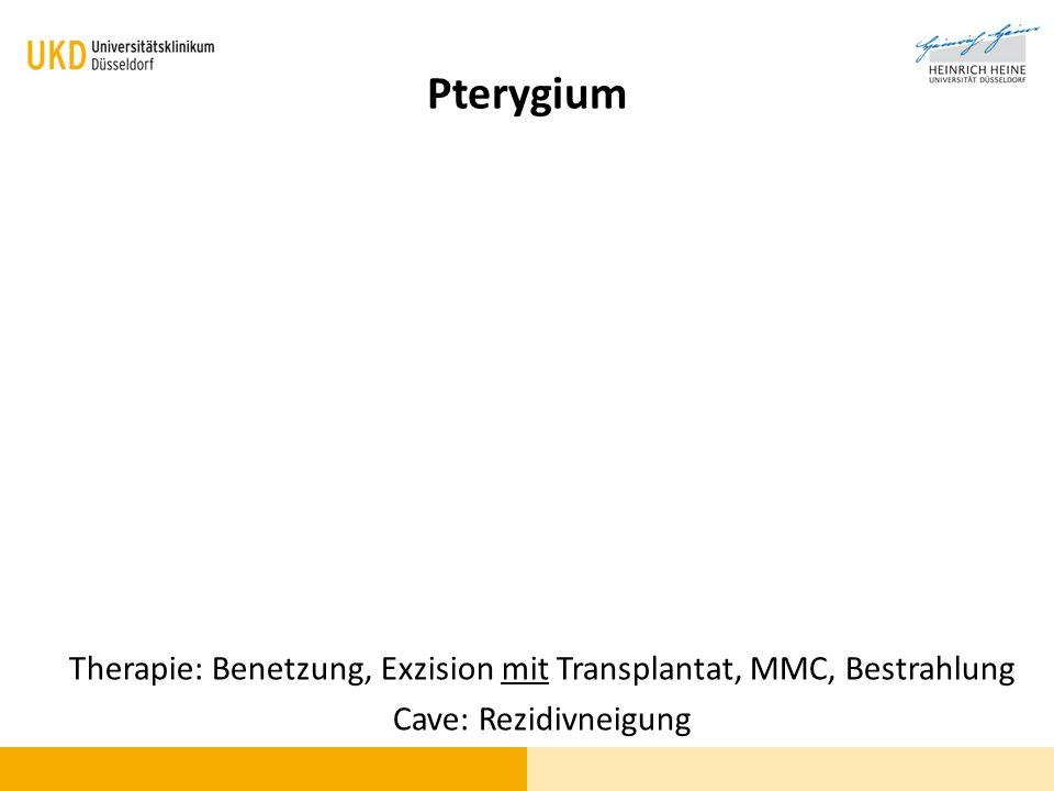 Pterygium Therapie: Benetzung, Exzision mit Transplantat, MMC, Bestrahlung Cave: Rezidivneigung