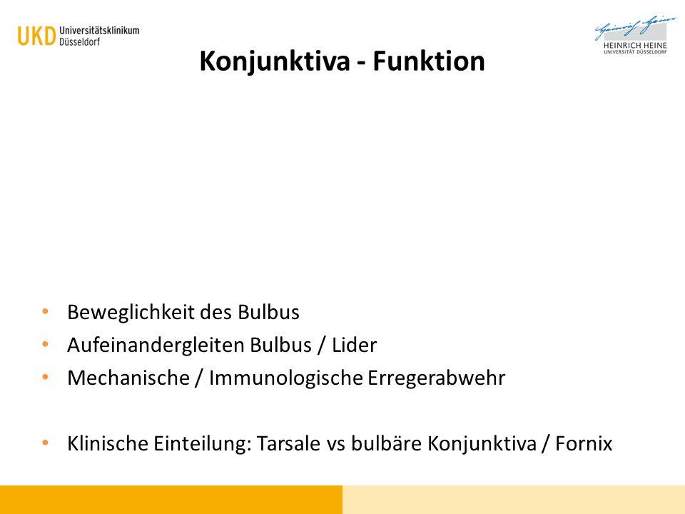 Konjunktiva - Funktion Beweglichkeit des Bulbus Aufeinandergleiten Bulbus / Lider Mechanische / Immunologische Erregerabwehr Klinische Einteilung: Tar