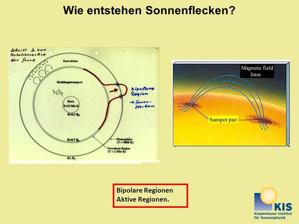 Wie entstehen Sonnenflecken? Bipolare Regionen Aktive Regionen.