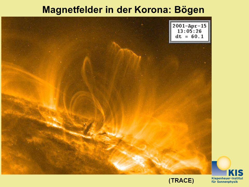 Magnetfelder in der Korona: Bögen (TRACE)