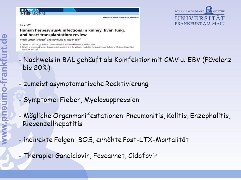 - Nachweis in BAL gehäuft als Koinfektion mit CMV u. EBV (Pävalenz bis 20%) - zumeist asymptomatische Reaktivierung - Symptome: Fieber, Myelosuppressi