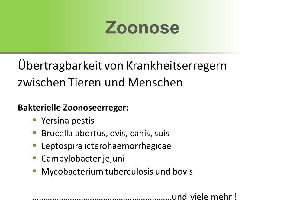 Übertragbarkeit von Krankheitserregern zwischen Tieren und Menschen Bakterielle Zoonoseerreger: Yersina pestis Brucella abortus, ovis, canis, suis Lep