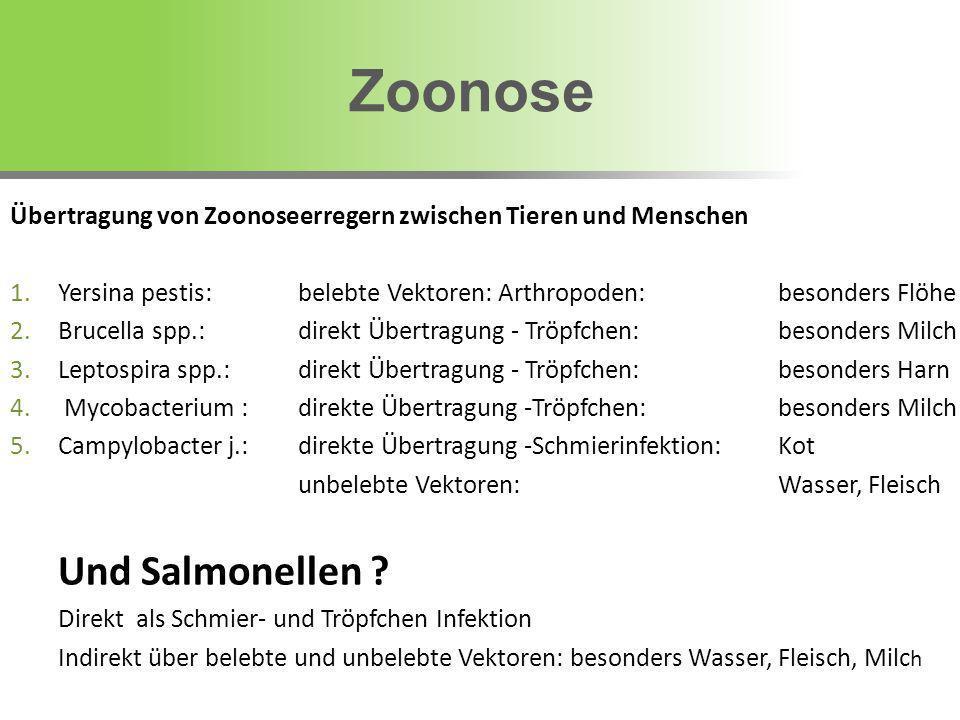 Übertragung von Zoonoseerregern zwischen Tieren und Menschen 1.Yersina pestis: belebte Vektoren: Arthropoden: besonders Flöhe 2.Brucella spp.:direkt Ü