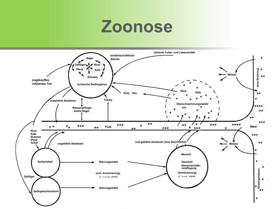1.European Food Safety Authority Zoonose Leitlinien 2.Tierseuchengesetz 3.Salmonella Verordnung Schwein Gesetzgebung